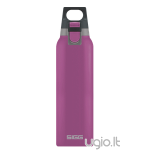 Thermo SIGG One Berry 0,5 l